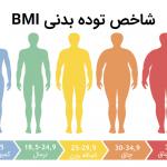 ترکیب بدنی و شاخص توده بدن چیست؟